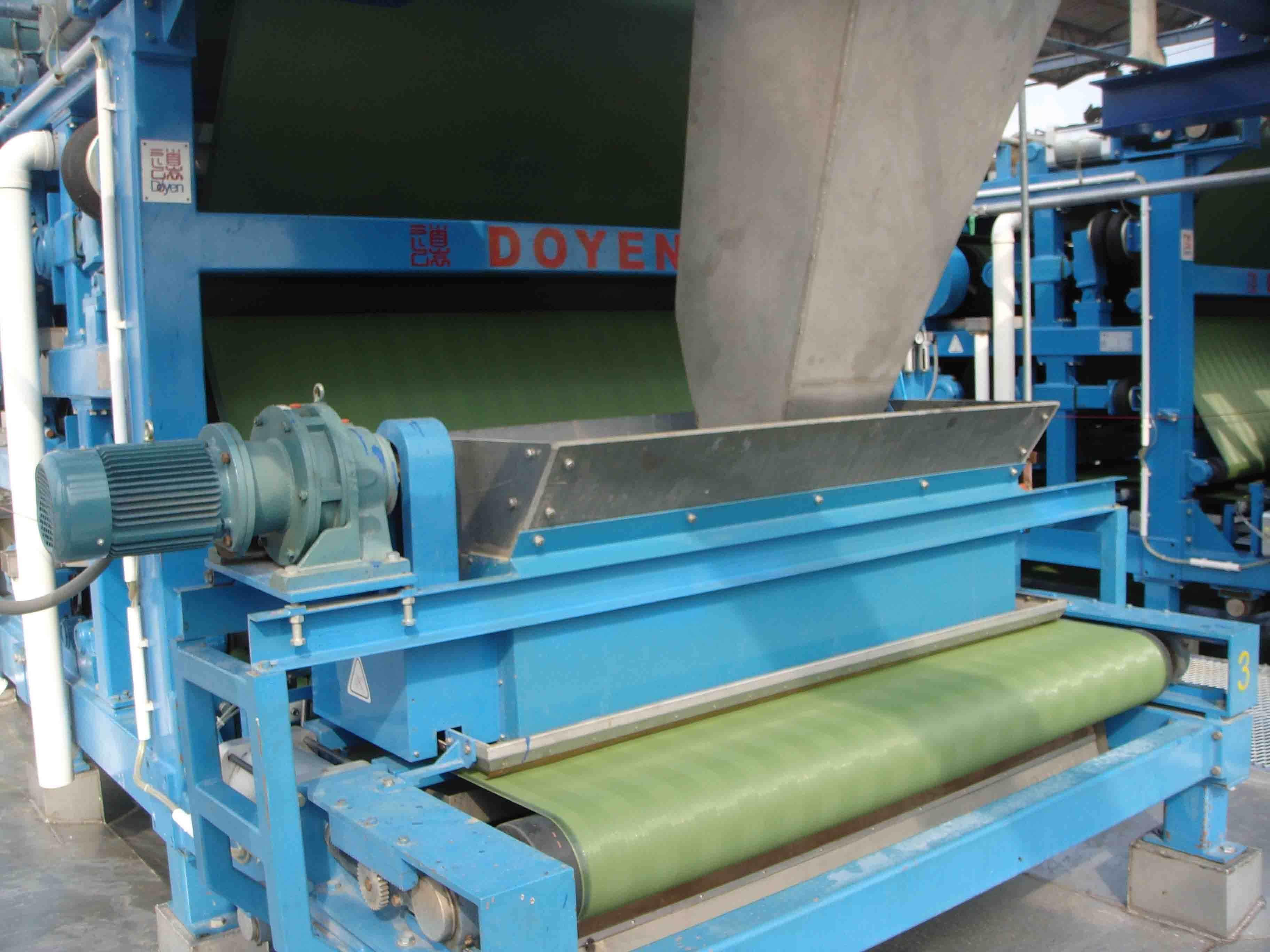 belt press for spent grain dewatering